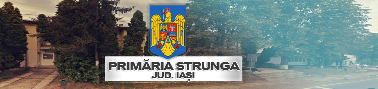Primaria Strunga